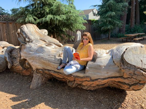 End of the line for stone pine carvings in Fremont Park