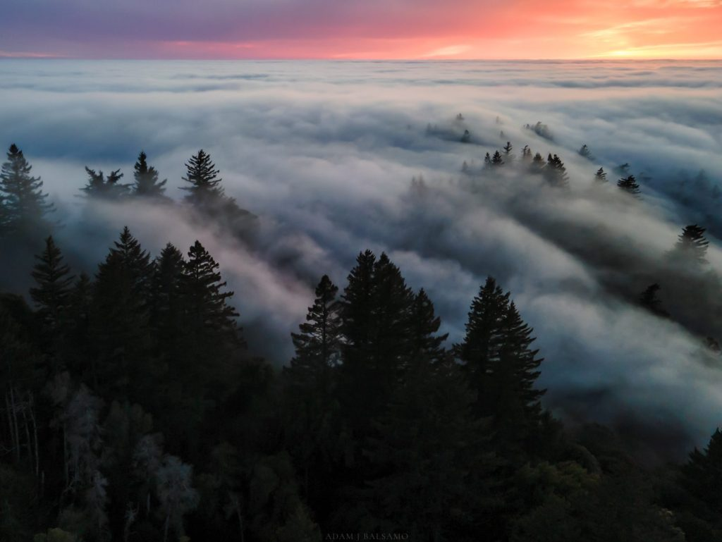 Adam Balsamo follows Peninsula fog with camera in hand – or in the air!