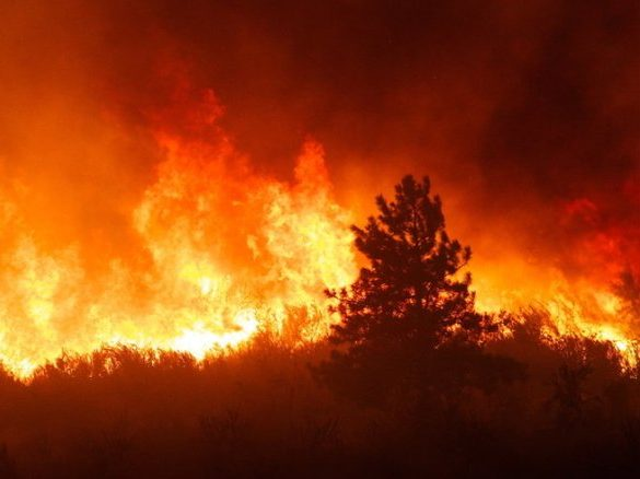 Woodside Fire Protection District selected for national wildfire planning assistance program