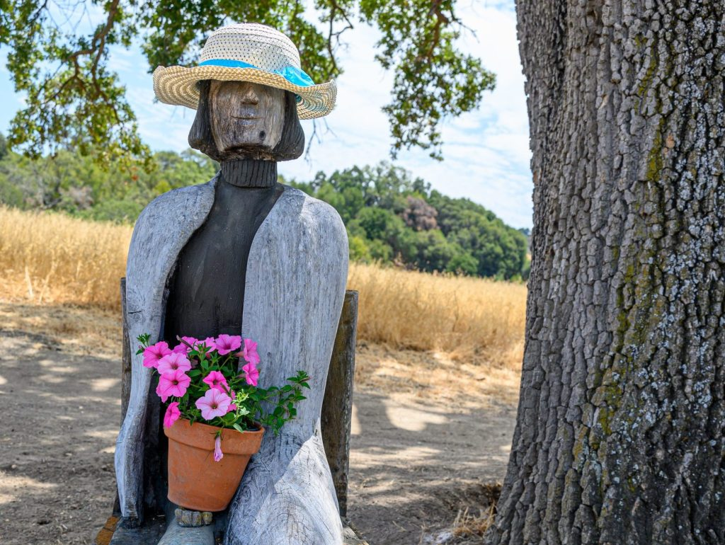 Know anything about the mysterious sculpture at Pearson Arastradero Preserve?
