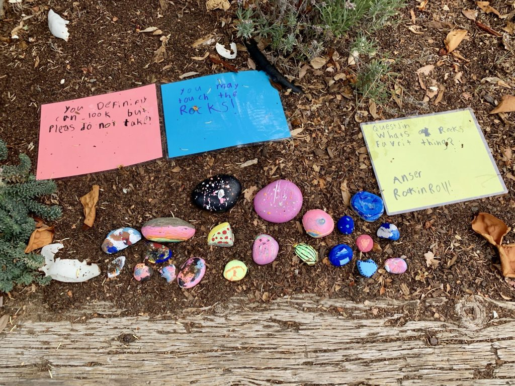Spotted: New painted rock garden on Brandon Way