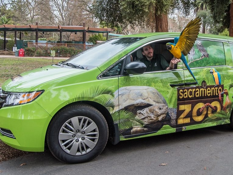 Take part in a virtual visit to the Sacramento Zoo on July 15