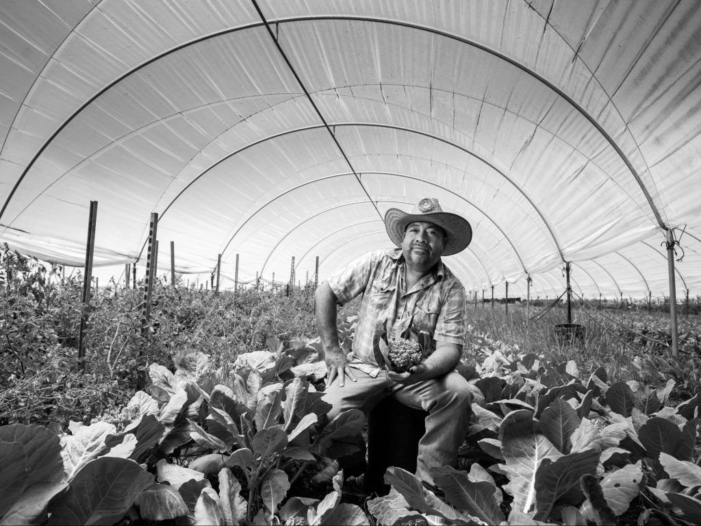Essential Farmers and Farm Workers: An exhibit of photographs of the silent heroes of the pandemic