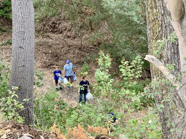 San Francisquito Creek gets cleaned up