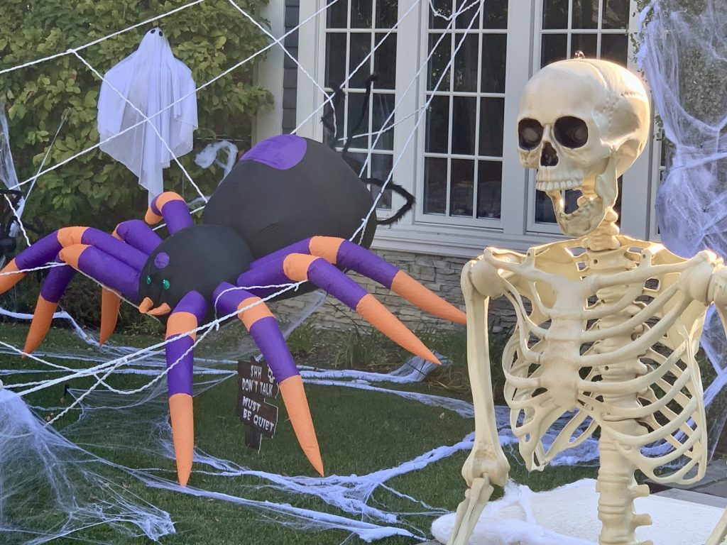 Spotted: Blinking spider next to scary skeleton